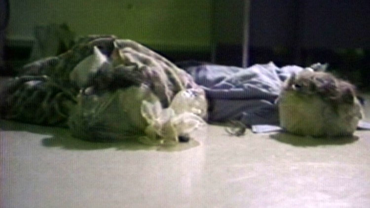 1979 November James Earl Ray escape dummies