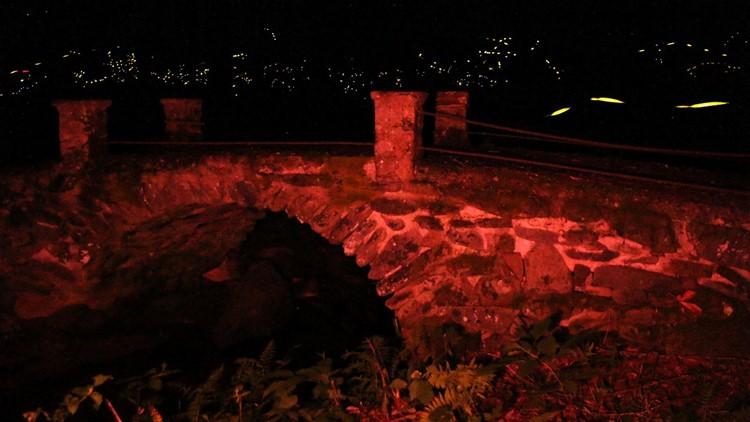 Synchronous Fireflies Bridge Smokies