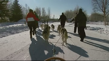 Sevier County pastor volunteers for the Iditarod