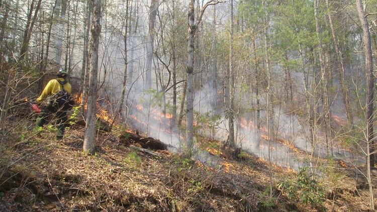 Prescribed burn rescheduled until Tuesday in Wears Valley, Metcalf Bottoms areas