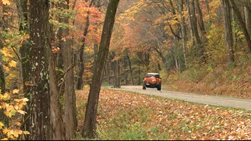 How to predict peak fall foliage in the Smokies