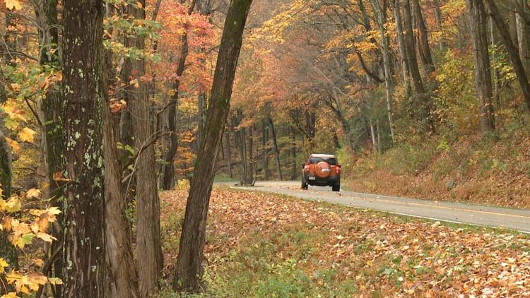 2012 Fall foliage Great Smoky Mountains newfound gap road