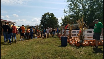 Maple Lane Farms celebrates 20th year of fall family fun