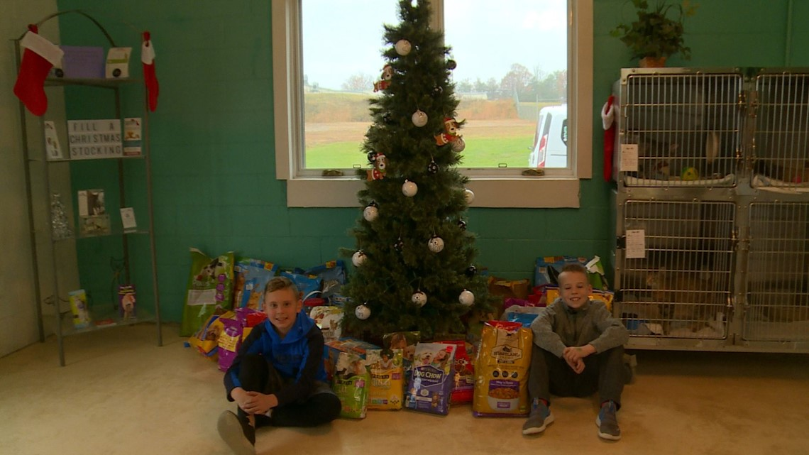 Instead Of Birthday Presents Jefferson Co Boys Ask For Donations To Animal Shelter Wbir Com