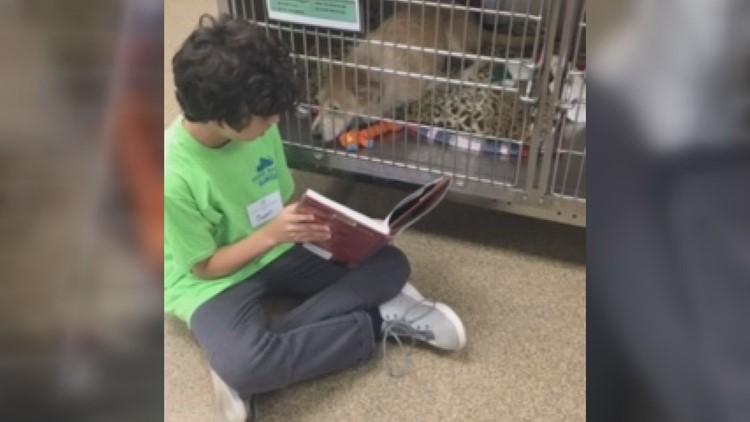Owen Davis reads to animals at the Humane Society
