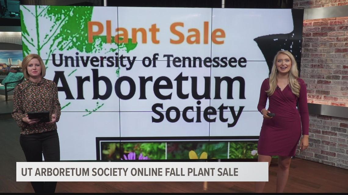 UT Arboretum host online plant sale