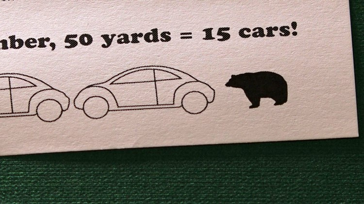 BearWise Placemat Place Mat Bear Safety NPCA 15 cars 50 yards