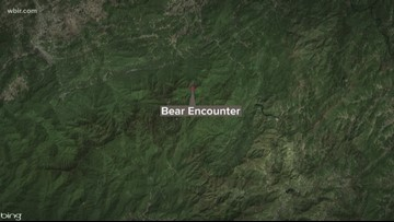Bear collides with woman on GSMNP trail