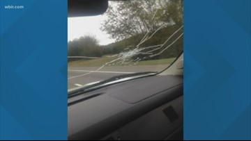 Claiborne Co. deputy who shot pistol through patrol car windshield fired for 'insubordination'