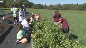 Pay it Forward: Special Growers, a special place for young adults