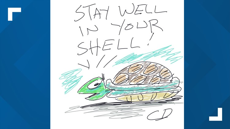 """""""Stay well in your shell!"""" 