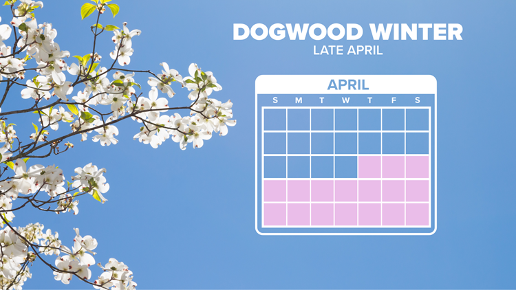 We set a new record low Thursday morning... Dogwood Winter 2.0 brings another round of frost to East Tennessee tonight