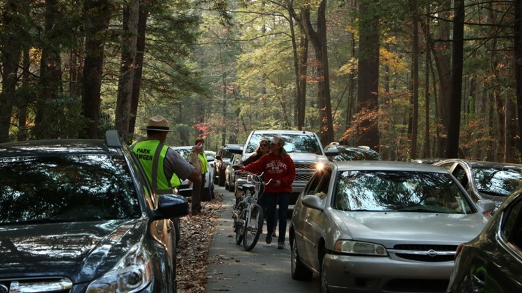 GSMNP warns about traffic as visitors stop to watch elk, bears
