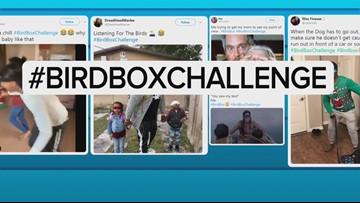 Blind community reacts to Bird Box Challenge