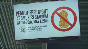 Peanut Free Night at the Smokies gives families with allergies a chance to go to the ballpark