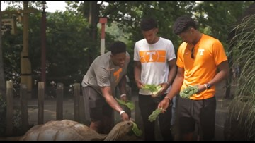 Admiral Schofield's visit to Zoo Knoxville looks like so much fun!