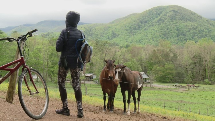 Hikers to enjoy vehicle-free Cades Cove