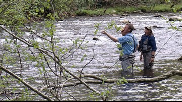 Fishing guides try to reel in lawmakers support to fund Smokies backlog