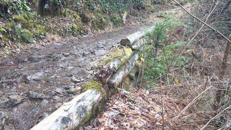Abrams Falls Trail in the Smokies will be closed during the week through November