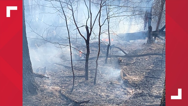 KFD, TN Forestry Division bring brush fire under control