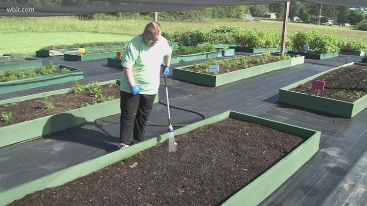Hometown Spotlight: Special Growers in Maryville