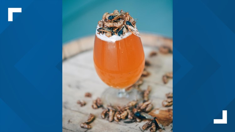 Brewd-X | Knoxville brewery creates cicada-themed beer to celebrate Brood X