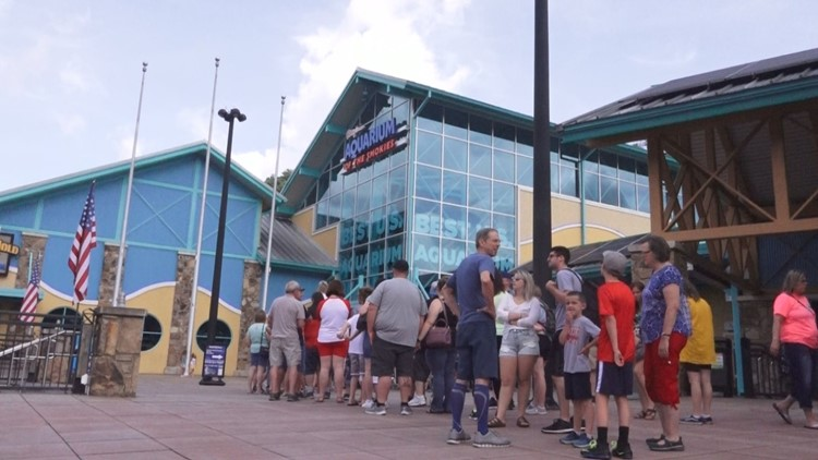 How Ripley's Aquarium is taking extra steps to accommodate families with autism needs