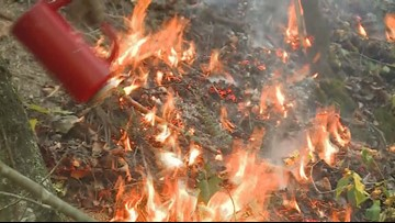 Crews fight blaze in Daniel Boone National Forest