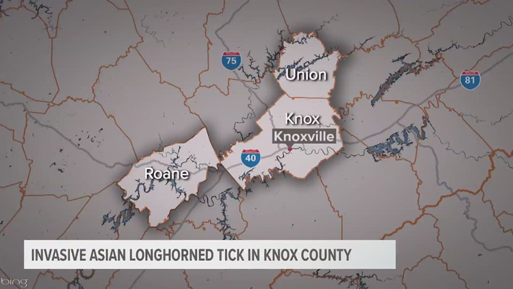 Invasive Asian Longhorned tick in Knox County