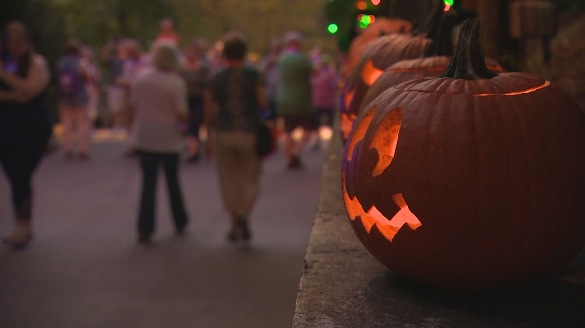 Autumn has arrived in East Tennessee! Here are the fall activities near you