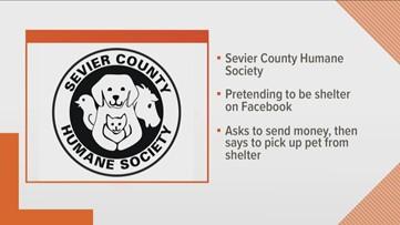 SCHS warns of Facebook scam