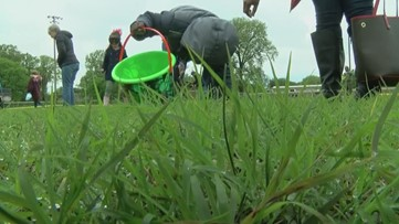 Shelby County hosts inclusive 'beeping' Easter egg hunt