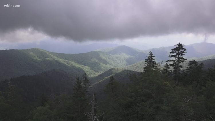 Head high up in the Great Smoky Mountains to beat the heat
