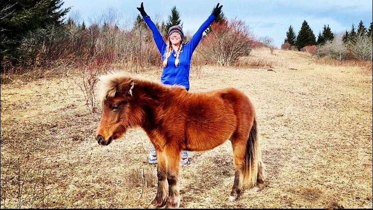 Trail log: Looking back at Gretchen Pardon's Appalachian Trail thru-hike in 2020