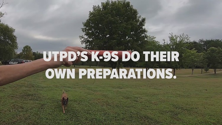 UTPD K-9s protect all Vols on game day, beyond (2019)