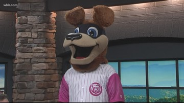 Tennessee Smokies team up with Make-A-Wish East Tennessee