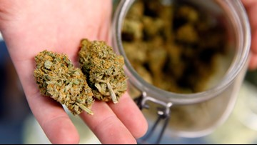 Marijuana 101: Where is it legal, what's the difference, and where do TN lawmakers stand?