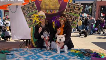 #10Pets: Thanks for sharing your Mardi Growl photos with us!