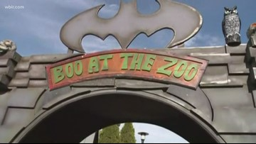 People are taking advantage of the fall weather at BOO! at the Zoo