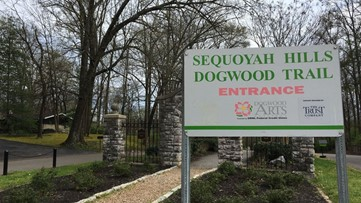 A sight for sore eyes: Dogwood Trails offer beautiful way to enjoy spring