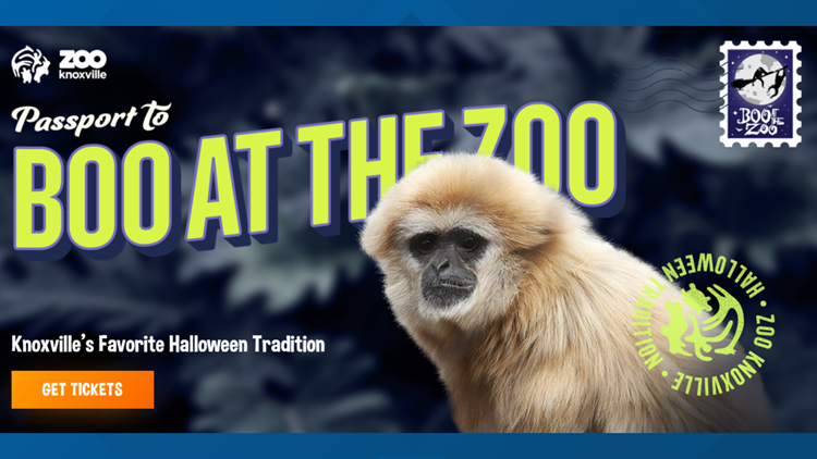 BOO! at the Zoo kicks off on Saturday with trick-or-treating in Zoo Knoxville