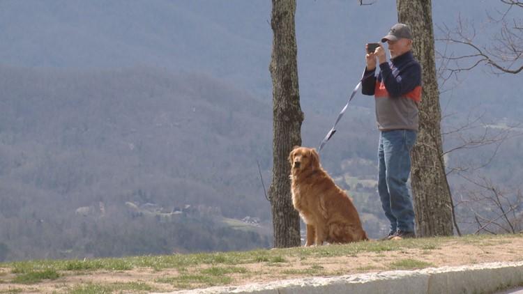 Visitor GSMNP Dog Golden Retriever Missing Link Foothills Parkway