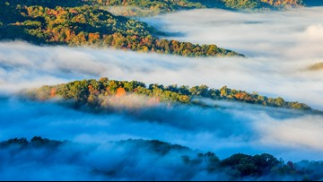 It's Earth Day, and 100,000 acres of forest are going to be preserved at the TN/KY state line