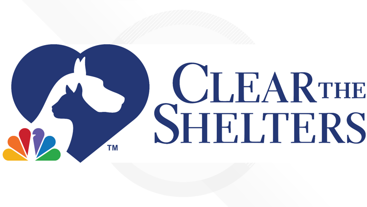 Give a pet a forever home during Clear the Shelters 2021 ending on Saturday