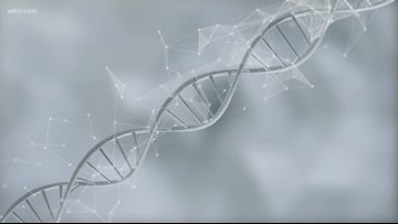 DNA diets: Do they work?
