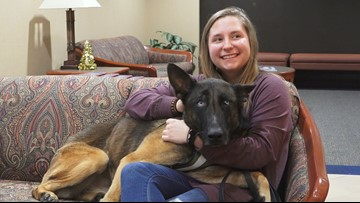 Neglected dog flies home to new life in Morristown