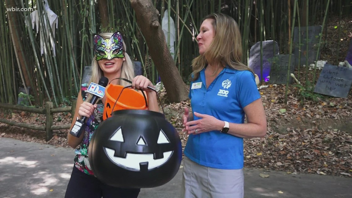 Trick or treat! Zoo Knoxville's Boo at the Zoo in full swing