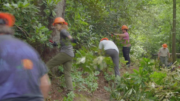 Friends Across the Mountains: Trails crew maintains hiking in the Smokies