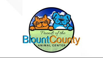 Friends of the Blount County Animal Center is at capacity, and here's how you can help