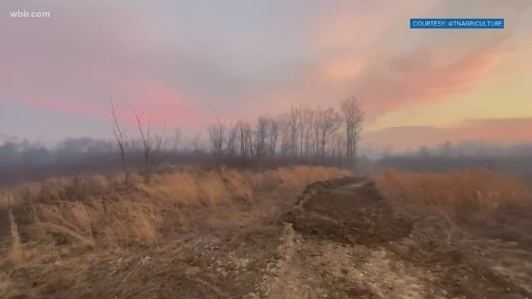 Crews fight 1,000 acre fire in Fentress Co.